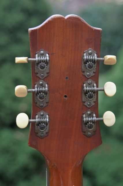 Everything, and Kluson guitar tuners on a strip the